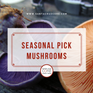 seasonal-pick-mushrooms-core