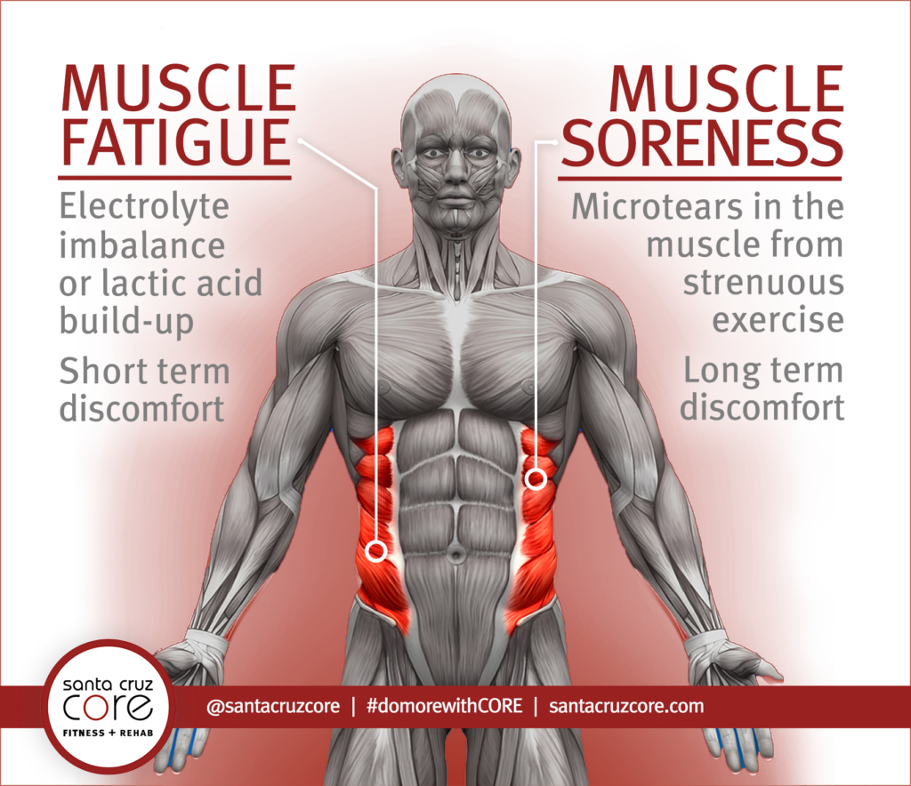sore+muscles+joint+pain+fatigue